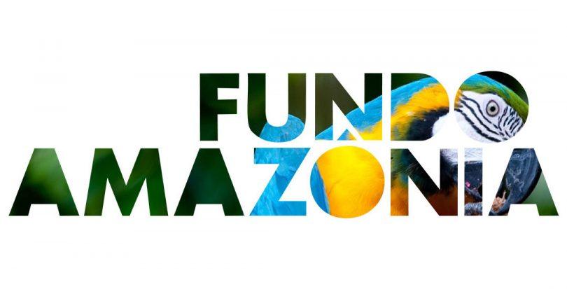 Logo Fundo Amazônia